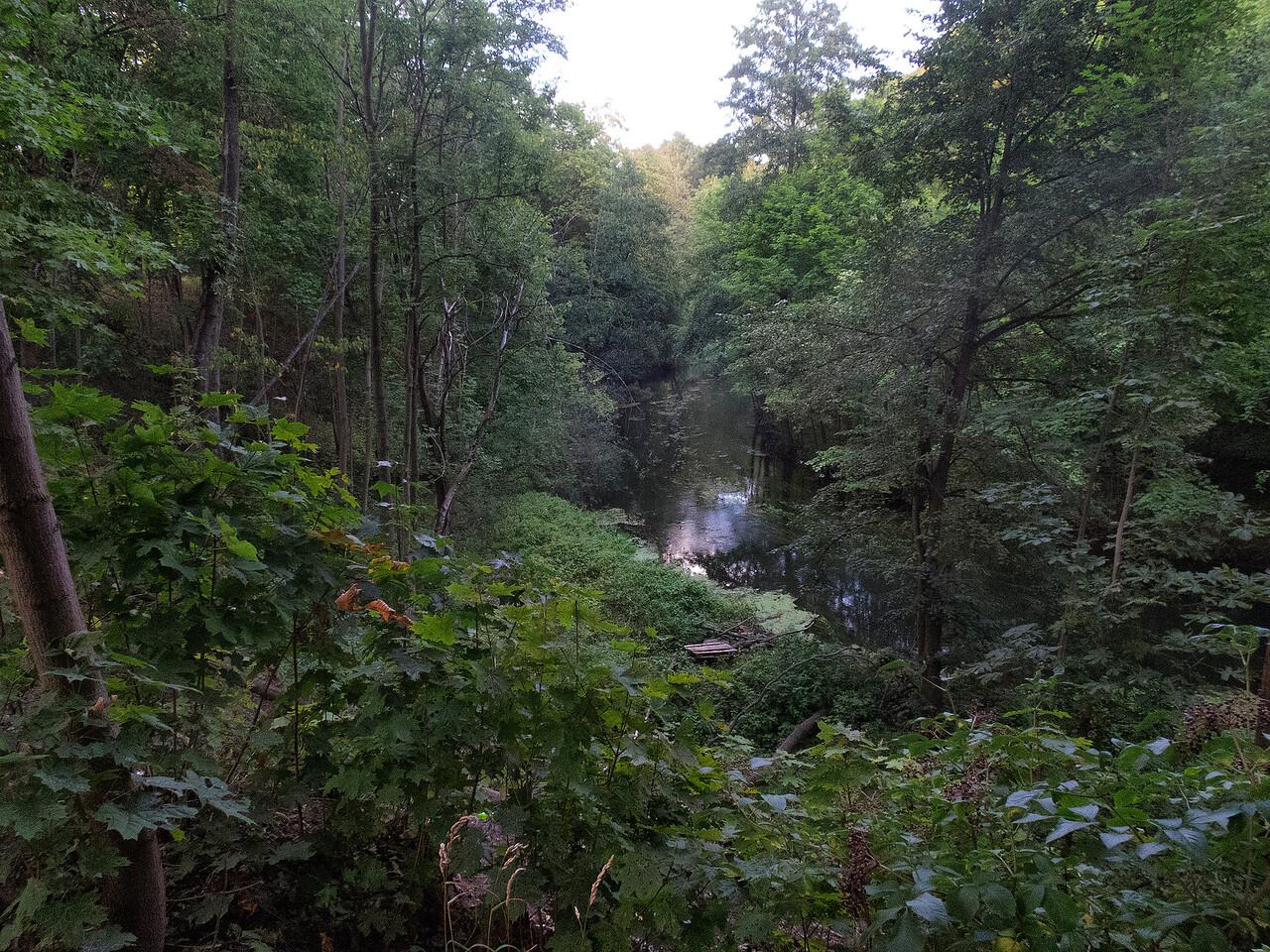 River Lyna, Olsztyn, Polska / Rzeka Lyna, Olsztyn, Polska