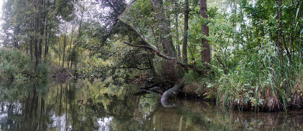 River Lyna, Polska / Rzeka Lyna, Polska