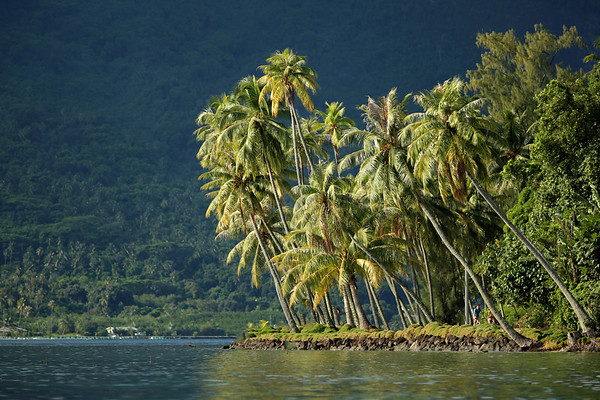 Pofai Bay, Bora Bora, Society Islands of French Polynesia