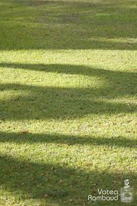 Photowalk jardins de la Présidence