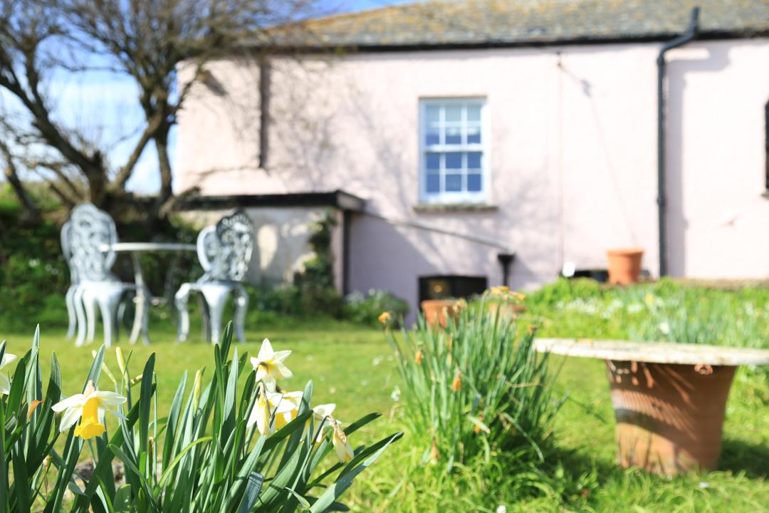 Foraging in Polzeath House's garden
