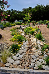 Another view of the upper front yard creek bed.