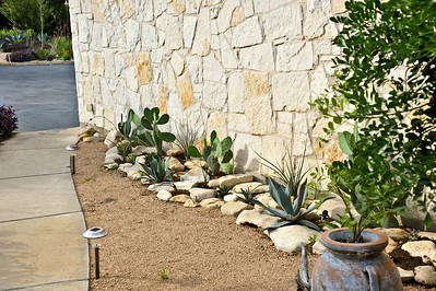 This photo shows the removal of the Asiatic jasmine and addition of a rock garden with succulents and cactus.  Decomposed granite in the foreground.