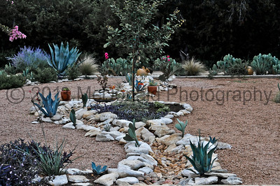 This is the upper portion of the dry creek bed in the front yard in fall 2012.