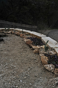 Two by two foot garden soil is placed around the periphery of the wall and plants are added.  Most are from cutting or pups of plants form the yard.