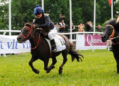 Lovisa Ahrenberg Gillberg och Gyllene Kvicken | Strömsholm 110612 Foto: Stefan Olsson / Svensk Galopp