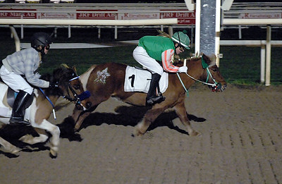 Snygg finish av Fanny Malmström och Moritz v Tobbenhof före Erik och Erica Lindström Täby 111030 Foto: Lars Odin