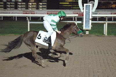 Snygg debut av Munsboro Skippy och Jacob Kvisla Täby 111030 Foto: Lars Odin