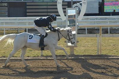 Rathosey Too vinner lätt i kat B  | Täby 120408 | Foto: Lars Odin