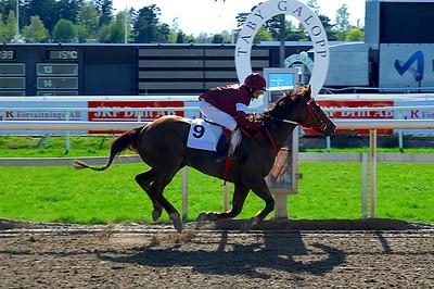 Emma Schillström och Meesa Bar Zippo vinner kat D | Täby 120513 | Foto: Lars Odin