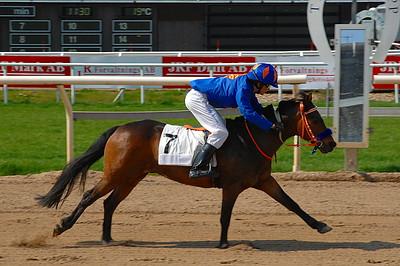 Too Bright Too och Jeff Åkesson vinner överlägset i kategori B | Täby 120520 Foto: Lars Odin