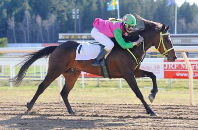 Look Sharp och Matilda Hassner vinner kat D | Täby 130505 |  Foto: Stefan Olsson / Svensk Galopp