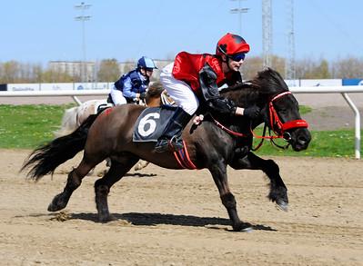 Almnäs Macarena vinner med Julia Blom | Jägersro 150503 | Foto: Stefan Olsson / Svensk Galopp