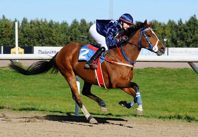 Poker Face vinner med Cornelia Hartsmar | Jägersro 151011 | Foto: Stefan Olsson / Svensk Galopp