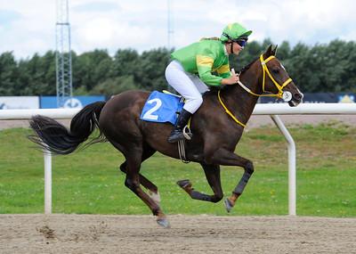 Merveilleux vinner med Kim Gudmundsson Jägersro 160814 Foto: Stefan Olsson / Svensk Galopp