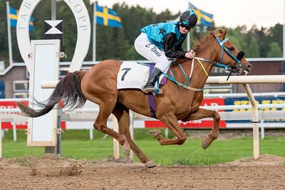 | Täby 150602 | Foto: Elina Björklund / Svensk Galopp