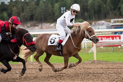 | Täby 150829 | Foto: Elina Björklund / Svensk Galopp