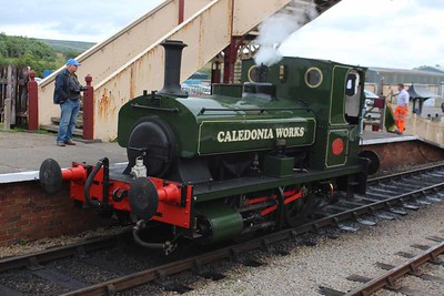 """1219 - Andrew Barclay 0-4-0ST """"Caladonia Works""""  at Furnace Sidings on 26.06.16."""