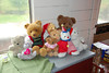 Teddies in the BSK