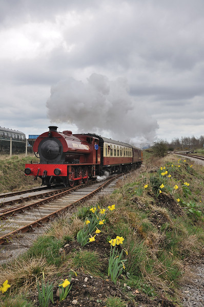 Steam and Daff's