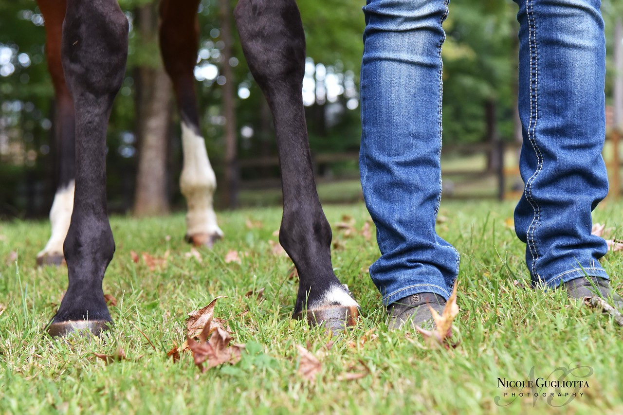 Who has prettier legs - humans or horses?