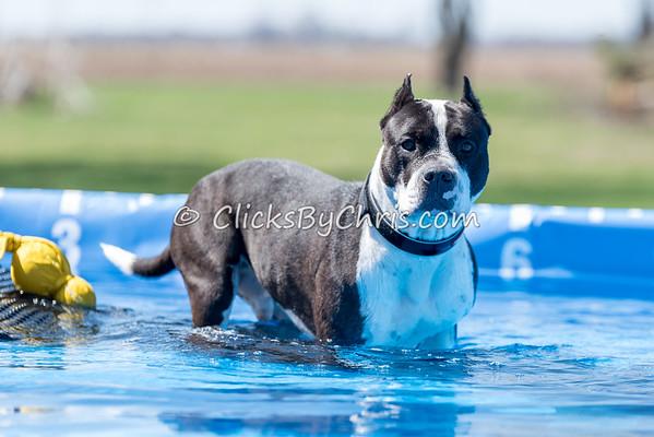 Pool Rental - Saturday, April 11, 2015 - Frame: 3640