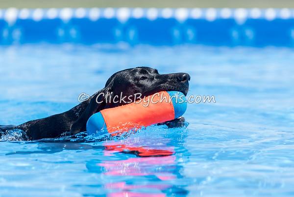 Pool Rental - Saturday, April 11, 2015 - Frame: 3600