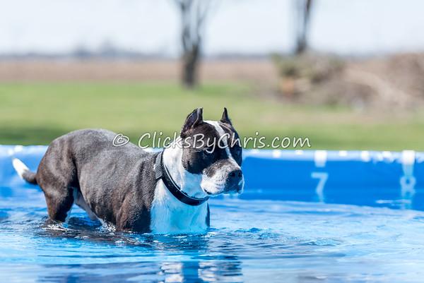 Pool Rental - Saturday, April 11, 2015 - Frame: 3638