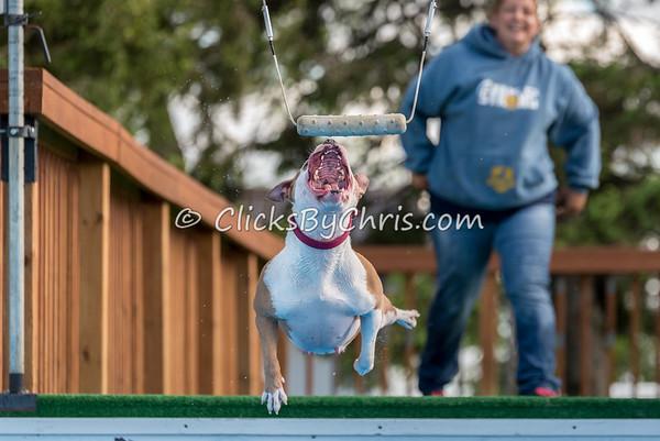 STK9 Pool Rental - Thursday, May 12, 2016 - Frame: 9851