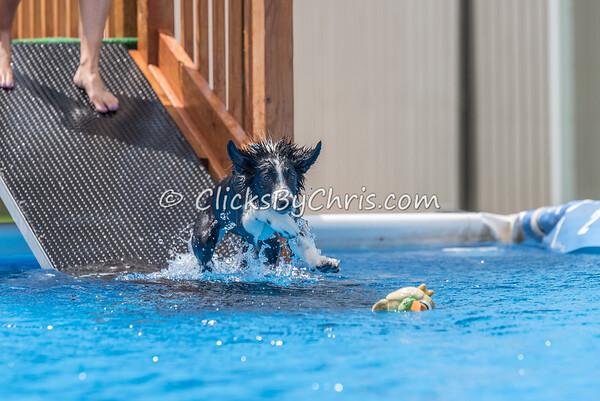 Pool Rental - Monday, May 25, 2015 - Frame: 0452
