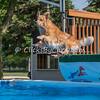 Pool Rental - Monday, May 25, 2015 - Frame: 1203
