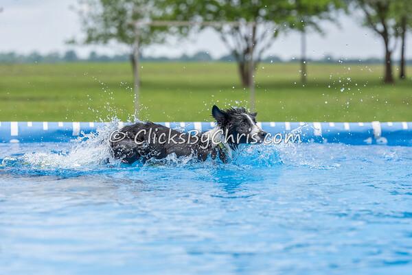 Pool Rental - Monday, May 25, 2015 - Frame: 0444