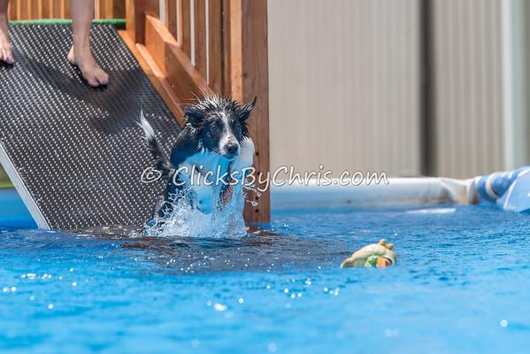 Pool Rental - Monday, May 25, 2015 - Frame: 0451
