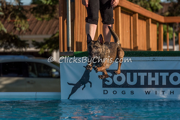 Pool Rental - Southtown K9 - Wednesday, June 15, 2016