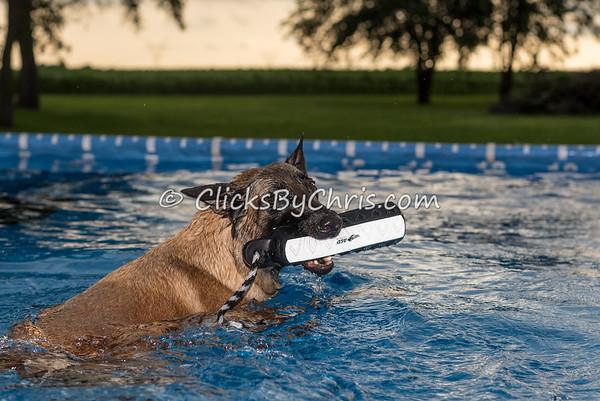 Pool Rental - Thursday, June 25, 2015 - Frame: 3873