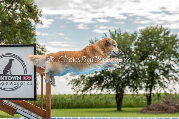 Pool Rental - Monday, July 20, 2015 - Frame: 7332