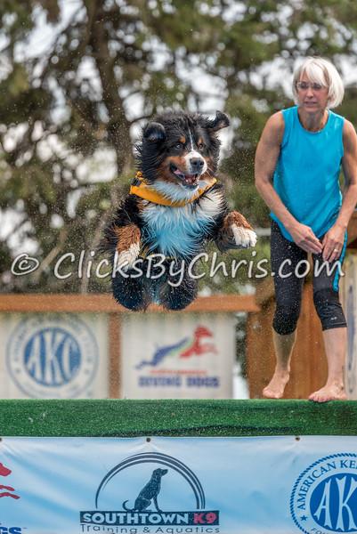 Pool Rental - Monday, July 20, 2015 - Frame: 7250
