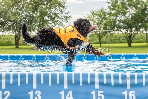 Pool Rental - Monday, July 20, 2015 - Frame: 7295
