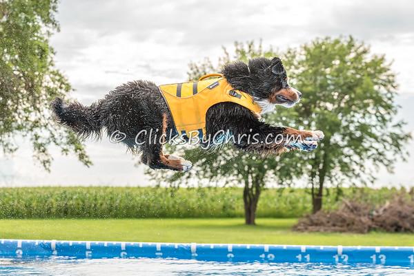 Pool Rental - Monday, July 20, 2015 - Frame: 7294