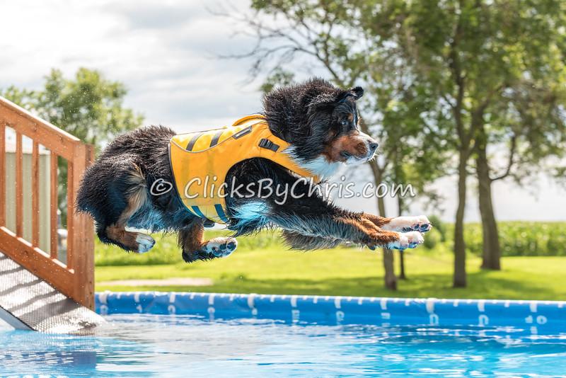 Pool Rental - Monday, July 20, 2015 - Frame: 7244