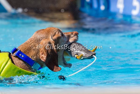 Pool-Rental-20140727-0007