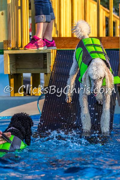 Pool-Rental-20140728-0037