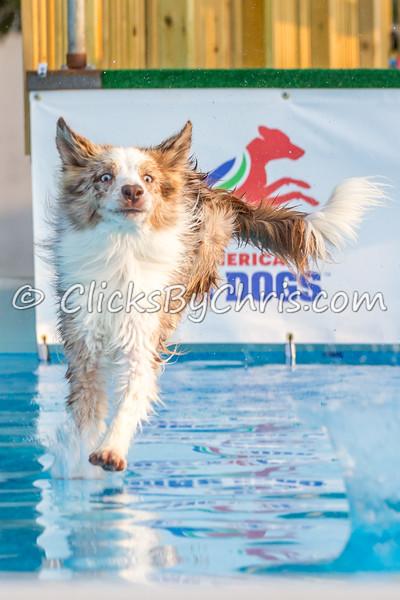 Pool-Rental-20140730-0085