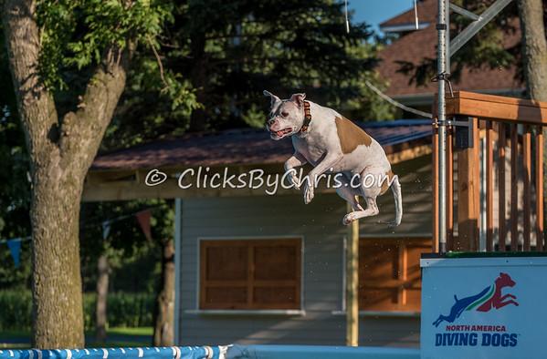 Pool Rental - Thursday, July 30, 2015 - Frame: 9256