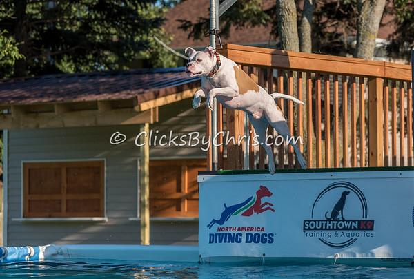 Pool Rental - Thursday, July 30, 2015 - Frame: 9255