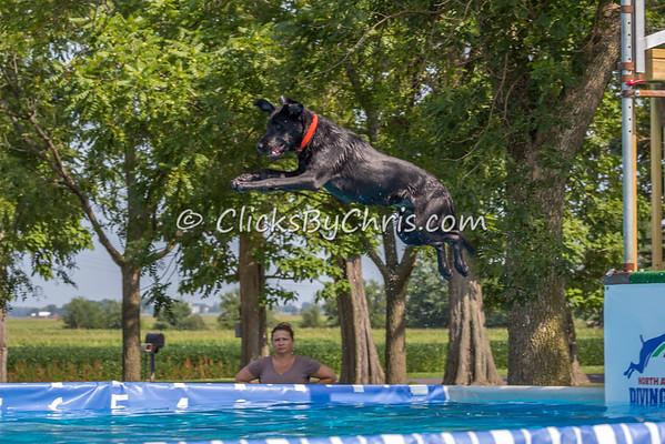 Pool-Rental-20140802-0010