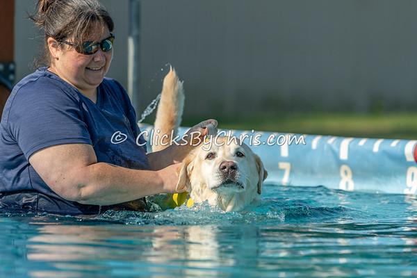 Pool Rental at Southtown K9 on Sunday, Aug. 9, 2020