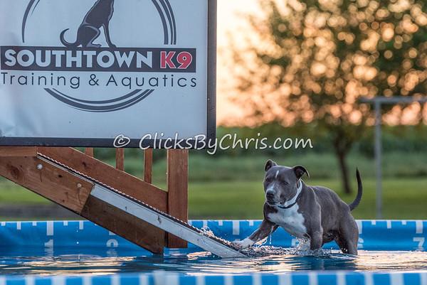 Pool Rental - Tuesday, Aug. 11, 2015 - Frame: 1682