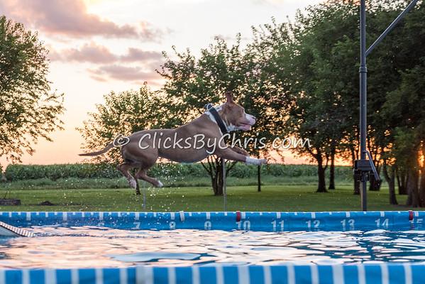 Pool Rental - Tuesday, Aug. 11, 2015 - Frame: 1690