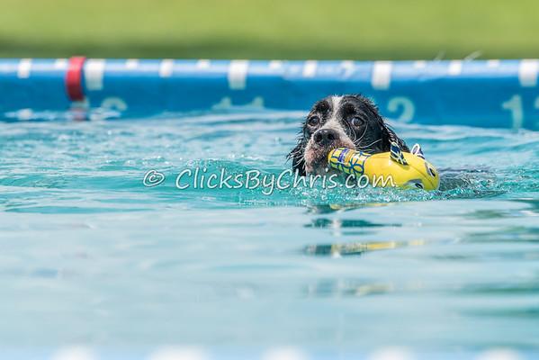 Pool Rental - Saturday, Aug. 15, 2015 - Frame: 2176